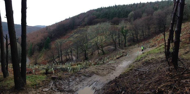 The Cwmdown guys took a few snaps of the new DH